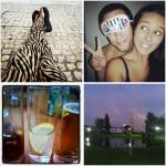 Lately on my Instagram #2