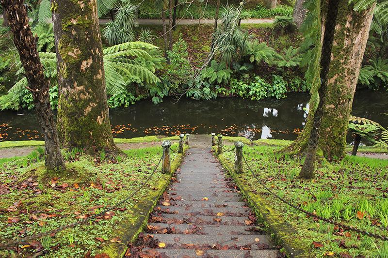 Parque Terra Nostra, Açores, São Miguel